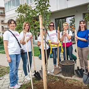 GoPlant team planting trees volunteer action